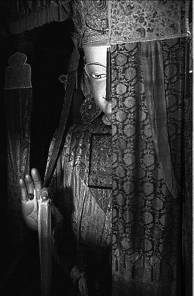 杨延康-强巴佛像 西藏2011